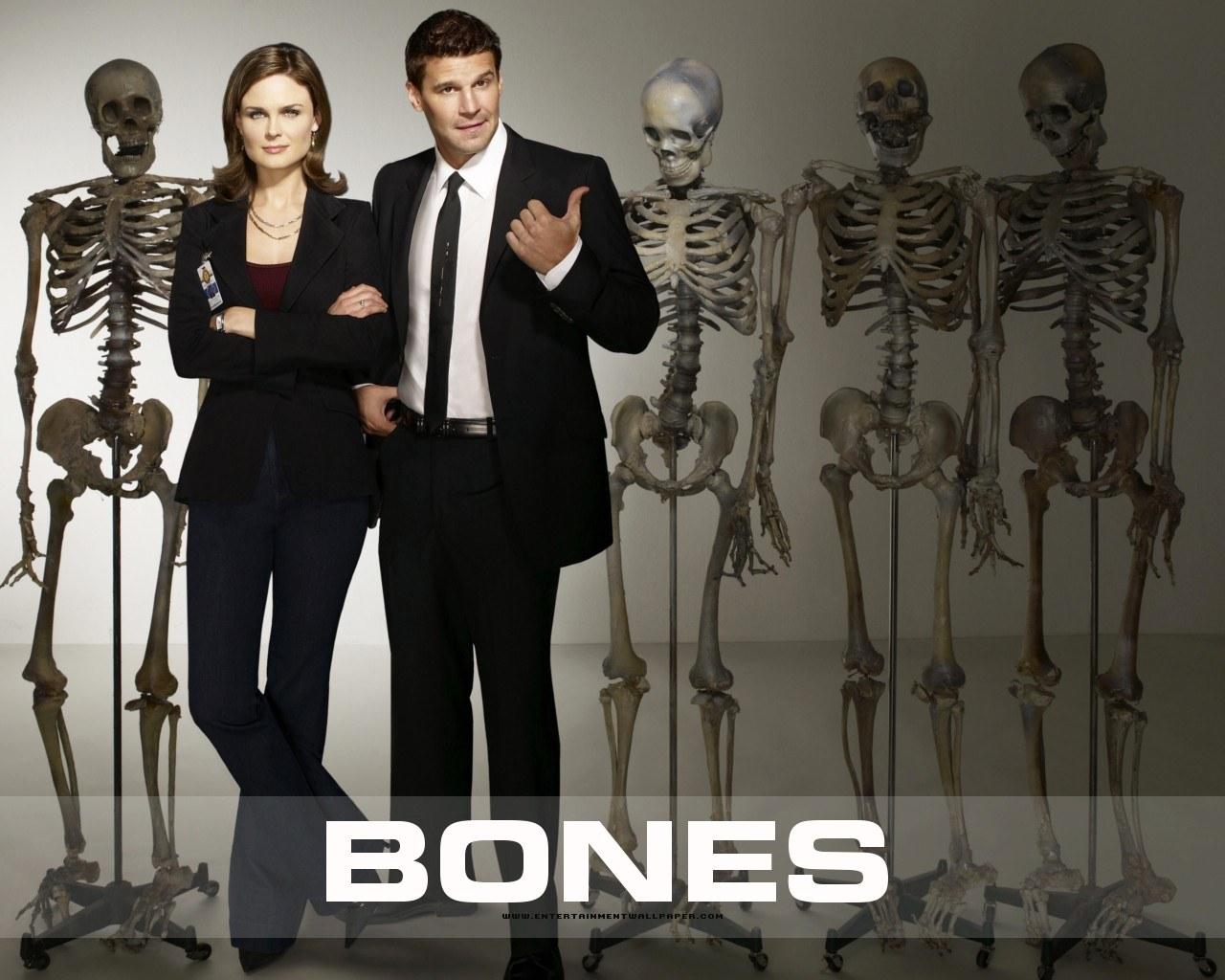 tv_bones01